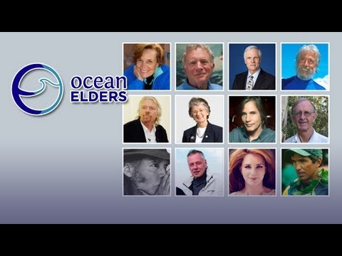 Ocean Elders – A Voice for the Ocean