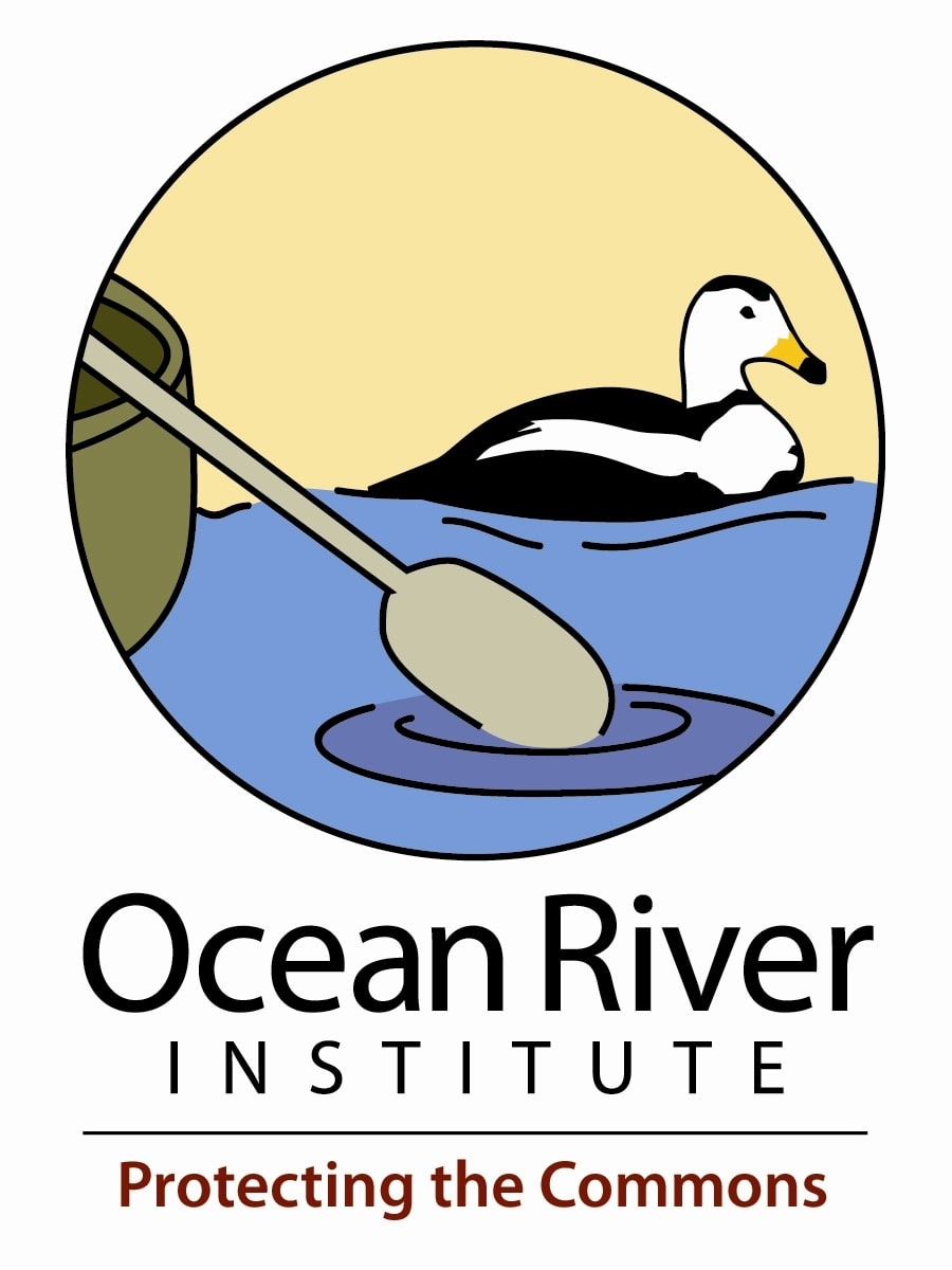 The Ocean River Institute
